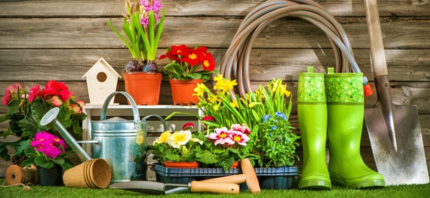Everything You Need to Know to Start Your Own Garden - different gardening tools