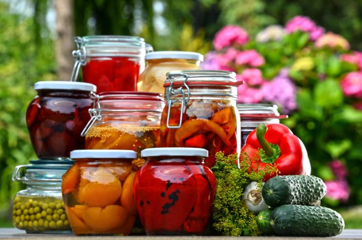 Jars of pickled vegetables and fruits in the garden. Marinated food.
