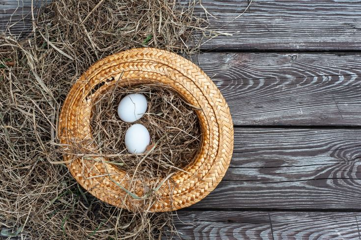 Few white eggs lays in the yellow straw hat as a nest with dry hay inside on the wooden aged board