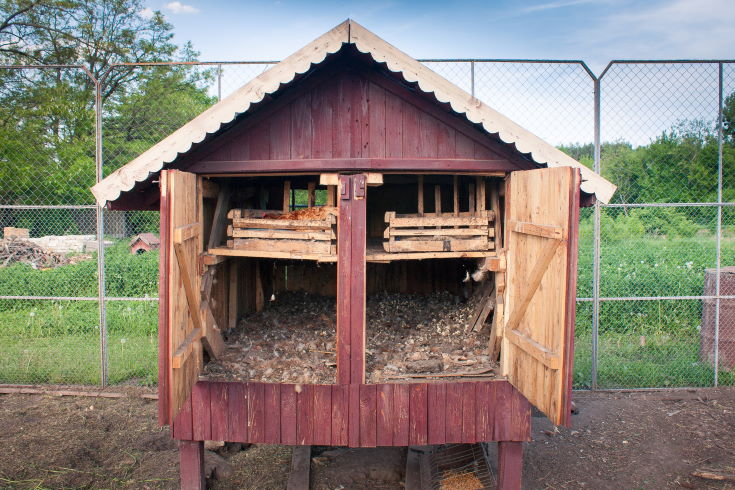 Exterior of handmade chicken's coop with nests