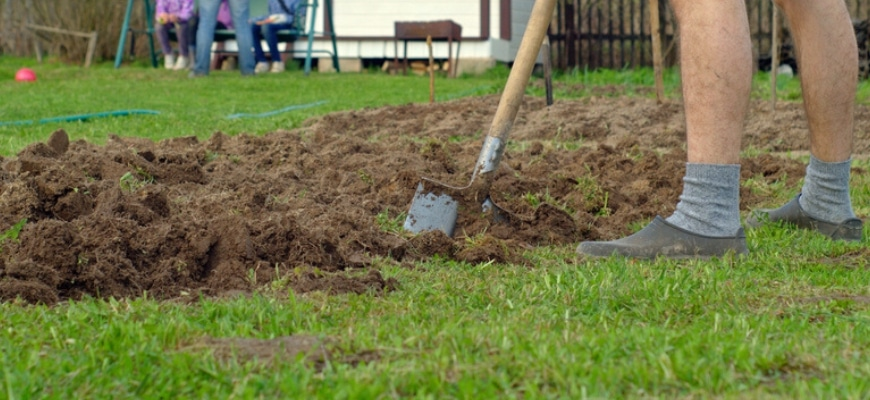 Cropped view showing man spreading soil to lawn using shovel.