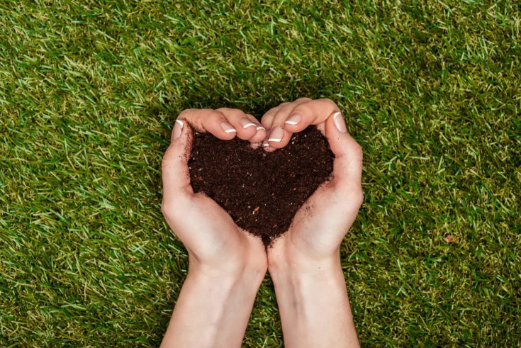 Cropped image of woman holding heart shaped soil in hands above green grass, earth day concept