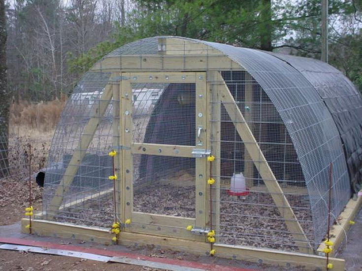 Hoop Coop for chicken on the woods