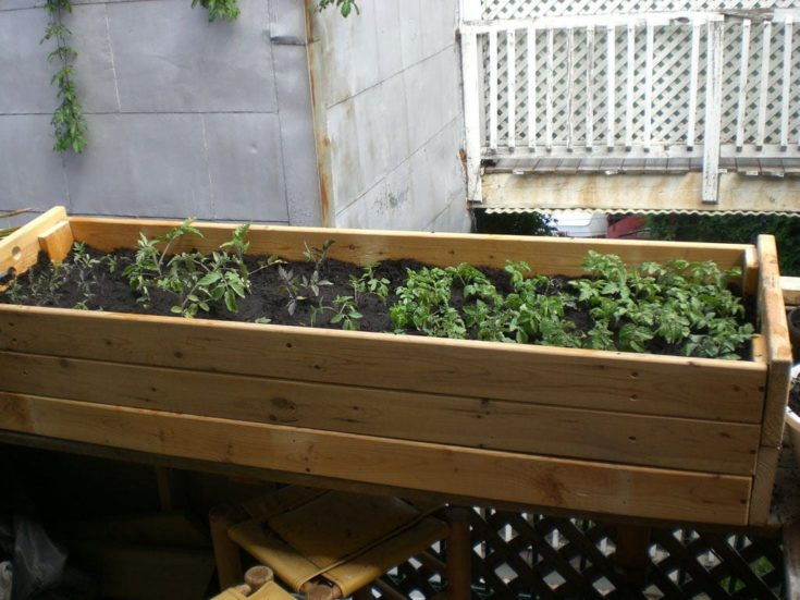 An old futon base is upcycled into a raised planter bed.
