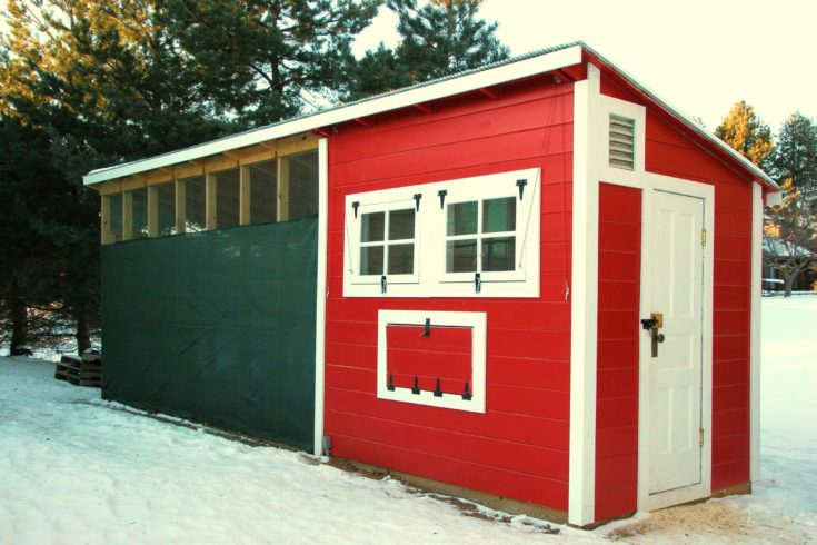 Chicken Coop With Run at the backyard in winter season