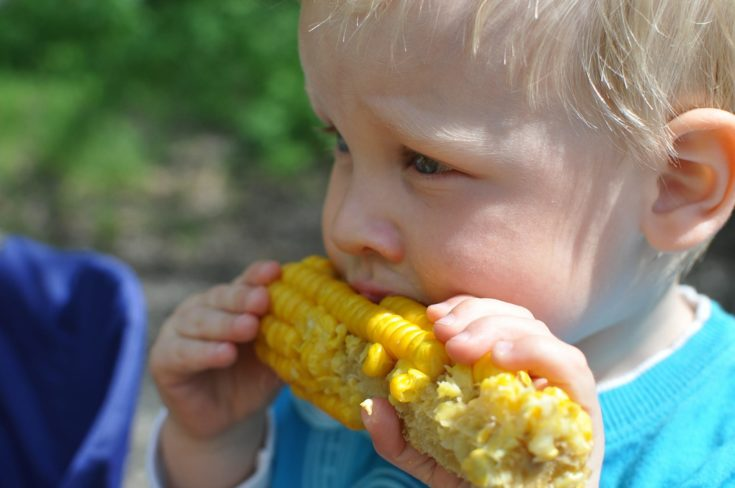 Close up shot of a child eating corn.