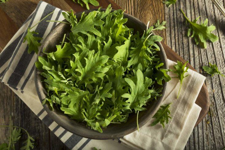 Raw Green Organic Baby Kale in a Bowl
