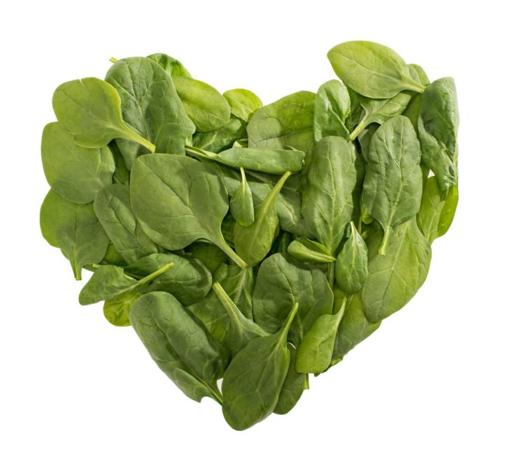 Top view of heart shaped green spinach leaves isolated on white, food styling
