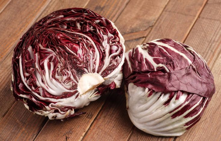 Fresh organic Radicchio Lettuce, ready for eating and cooking