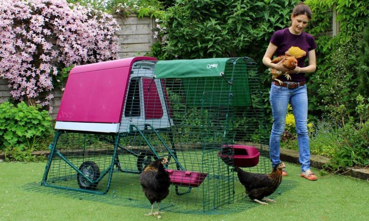 Omlet Eglu Go UP Chicken Coop with 2m Secure Steel Mesh Run and Wheels