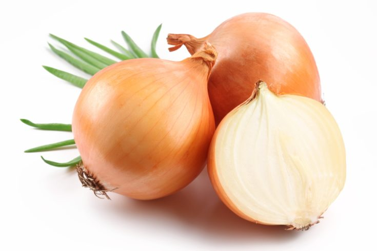 Fresh bulbs of onion on a white background.