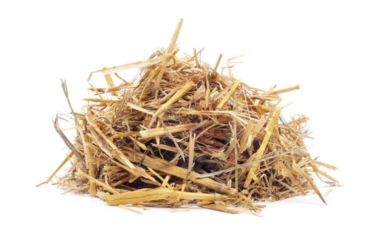 Pile of straw isolated in white background