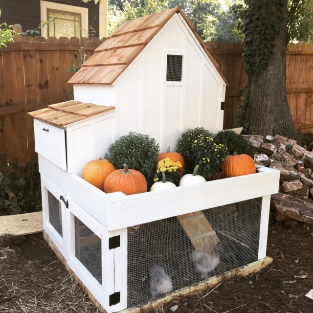 Small white painted Chicken Coop with Planter