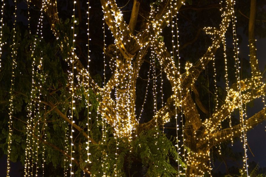 The 5 Best Battery Operated Outdoor Christmas Lights In 2020