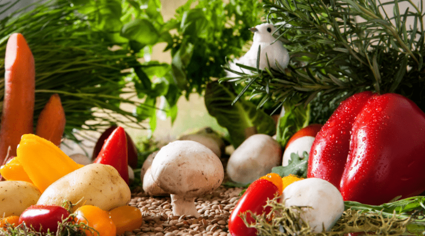 Featured Image -EVERYTHING YOU NEED TO KNOW ABOUT WHEN TO PLANT YOUR VEGETABLE GARDEN