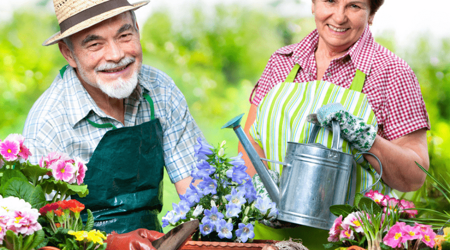 Featured Image - THE MANY AMAZING HEALTH BENEFITS OF GARDENING AND WHY YOU NEED TO DO IT