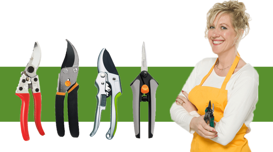 Featured Image - DETERMINING THE BEST PRUNING SHEARS FOR YOU