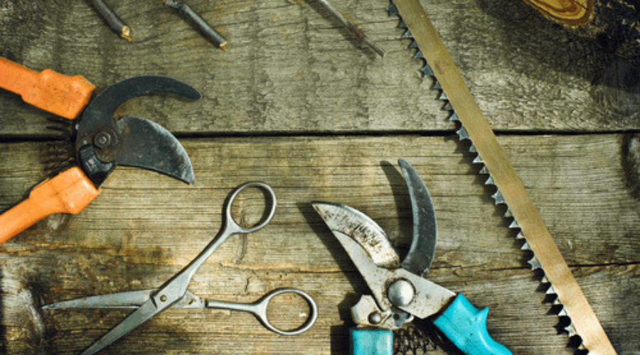 Featured Image - HOW TO SHARPEN PRUNING SHEARS WITH A FILE