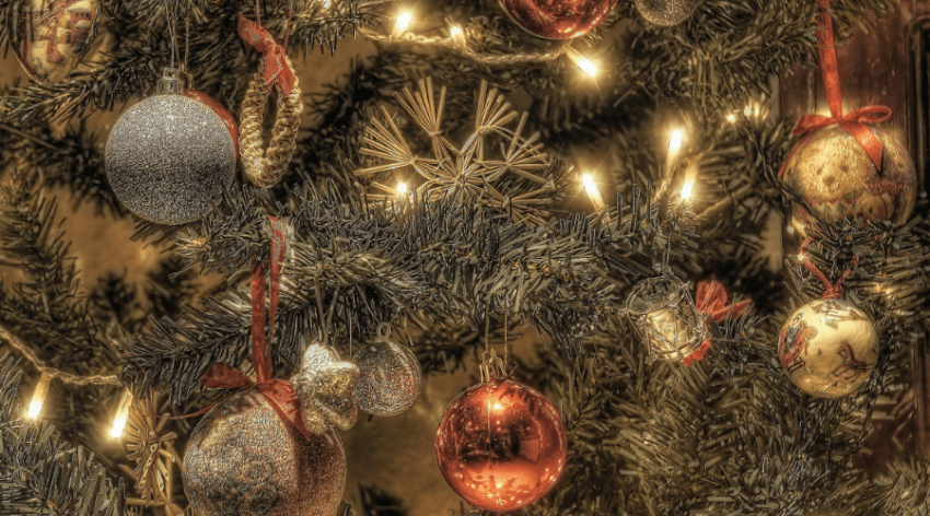 Featured Image - CARING FOR A LIVE CHRISTMAS TREE