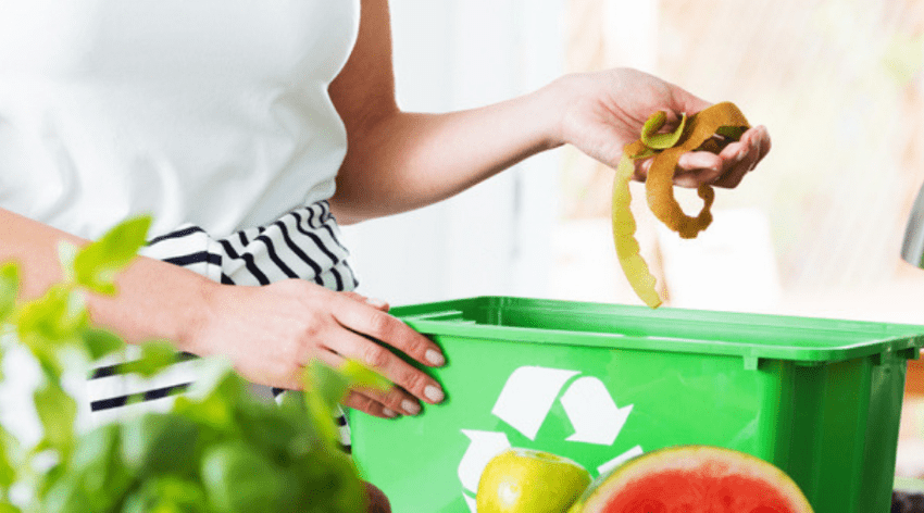Featured Image - OUR TOP PICKS FOR THE BEST KITCHEN COMPOSTER