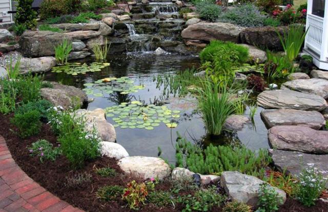 Cascading-Ponds