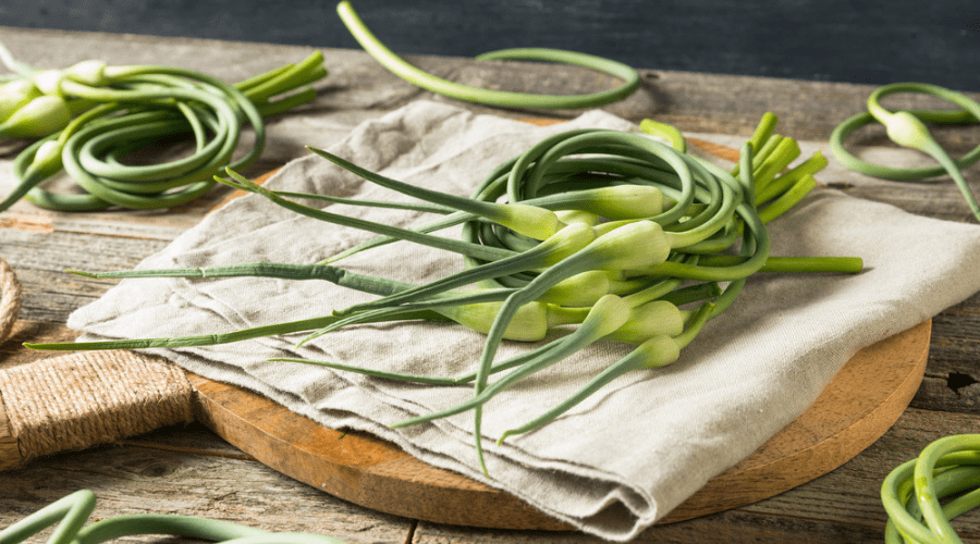 Featured Image - WHAT ARE GARLIC SCAPES AND WHAT CAN YOU DO WITH THEM_