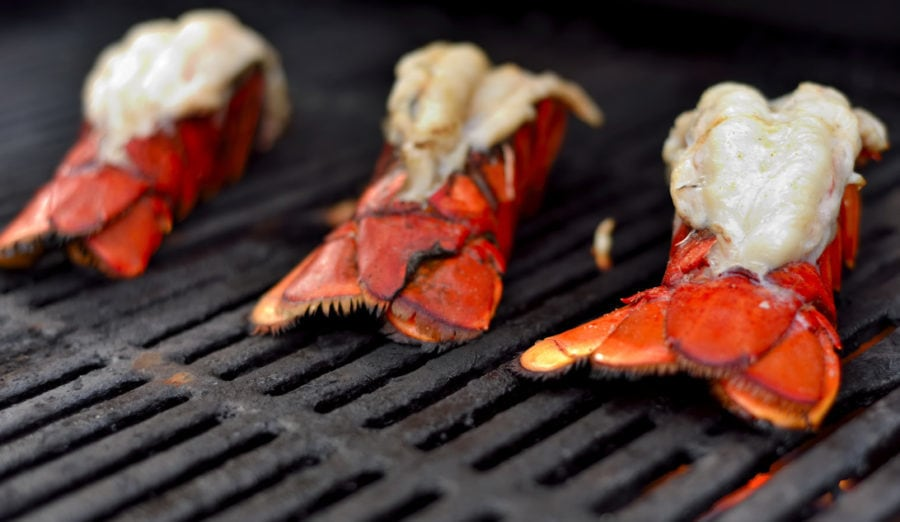 grilled lobster winter grilling recipe