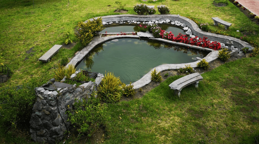 Featured Image - IDEAS TO BRIGHTEN YOUR YARD WITH A GARDEN POND