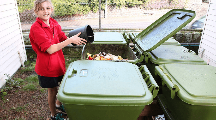 Featured Image - THE 5 BEST WORM COMPOSTERS MONEY CAN BUY
