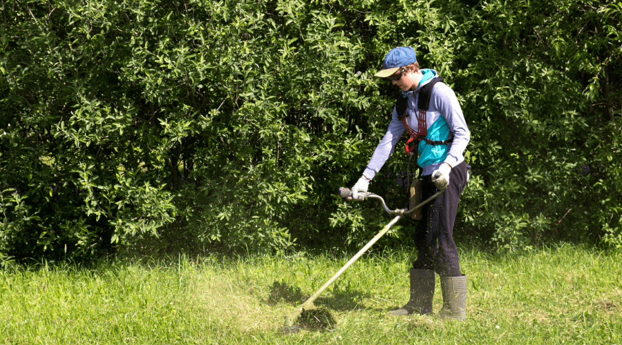 Featured Image - WEEDING THROUGH THE BEST STRING TRIMMER BRANDS