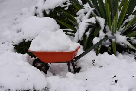 wheelbarrow loaded with snow and ice