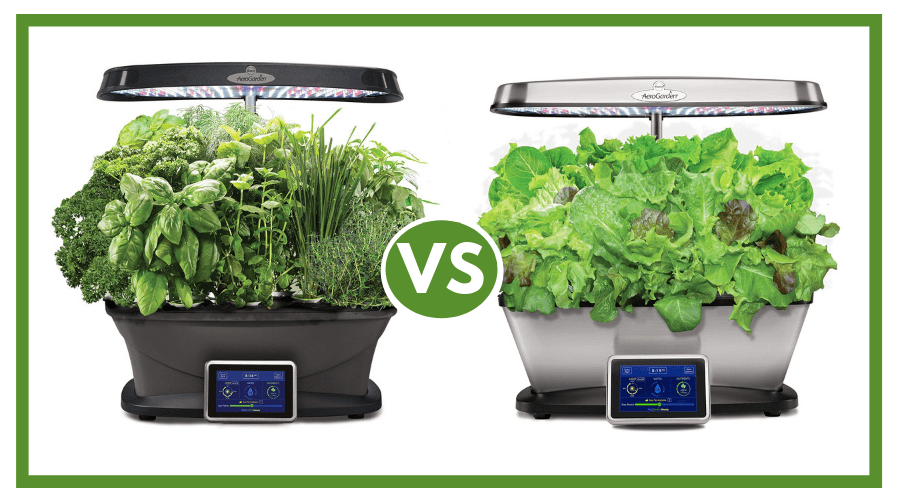 Featured Image - AEROGARDEN BOUNTY VS AEROGARDEN BOUNTY ELITE