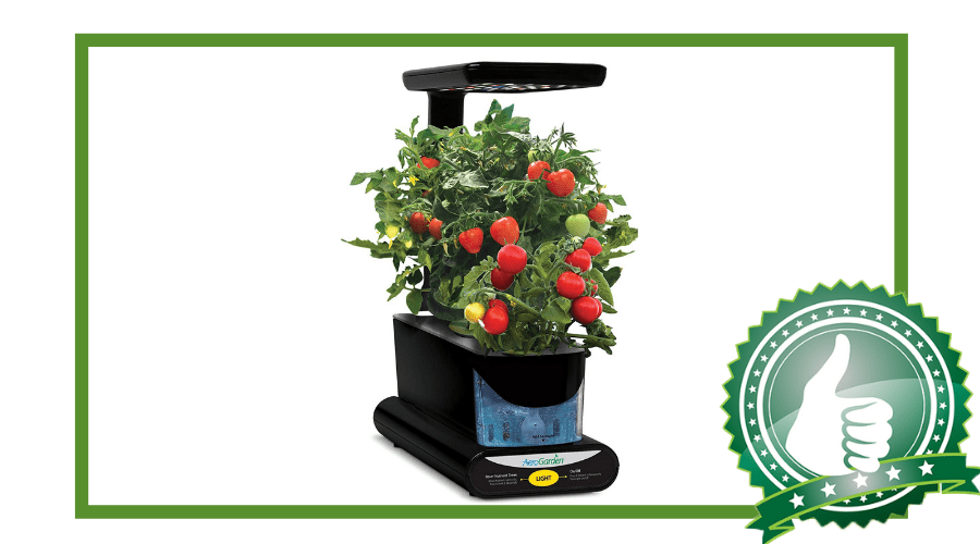 Featured Image - AEROGARDEN SPROUT LED WITH GOURMET HERB SEED POD KIT, BLACK