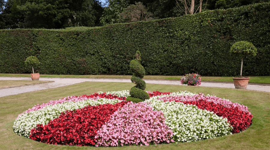 Featured Image - OF THE BEST FLOWER HEDGE IDEAS_ #23 IS SO EASY!