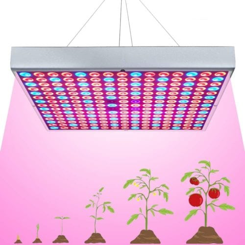 i-Venoya 45W LED Grow Light