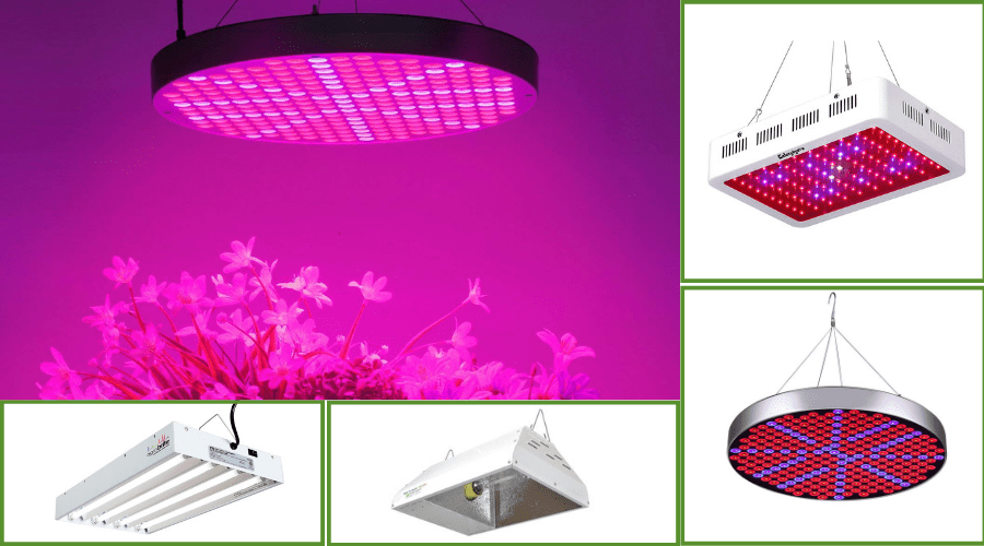 Featured Image - BEST GROW LIGHT_ PRODUCE ALL YEAR LONG