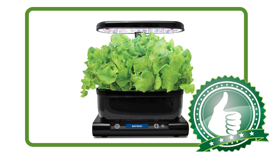 Featured Image - AEROGARDEN HARVEST WITH GOURMET HERB SEED POD KIT REVIEW