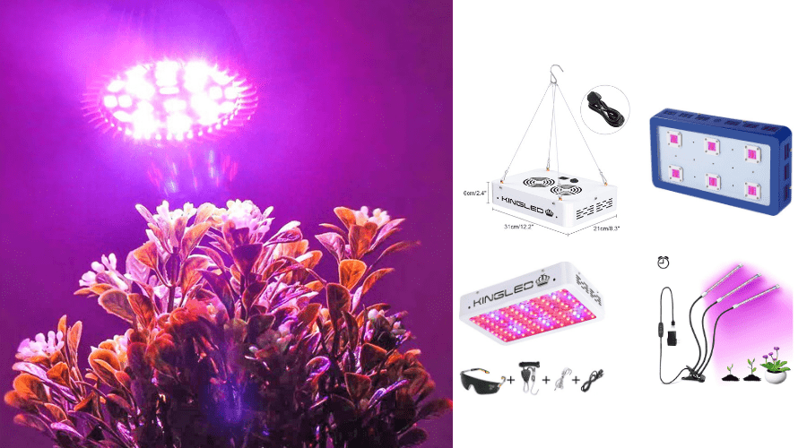 Featured Image - BEST KINGLED GROW LIGHT REVIEWS