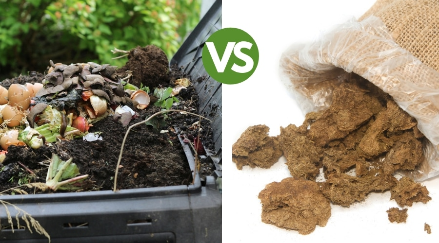 Featured Image - COMPOST VS MANURE_ THE BEST FOR YOUR SOIL HEALTH