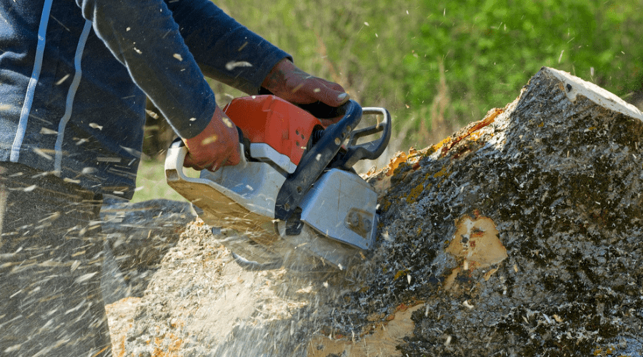 Featured Image - BEST PROFESSIONAL CHAINSAW_ NO JOB TOO BIG