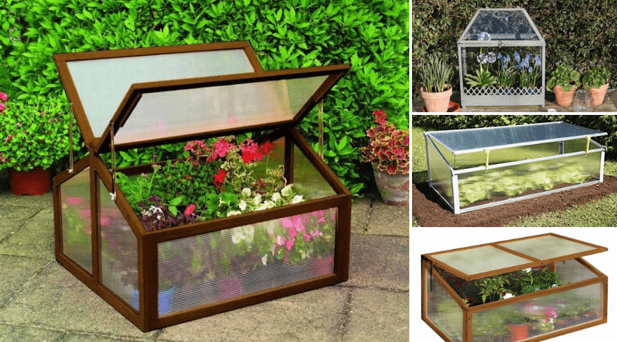 Featured Image-COLD FRAME DESIGNS FOR GREENHOUSE INSPIRED GROWTH