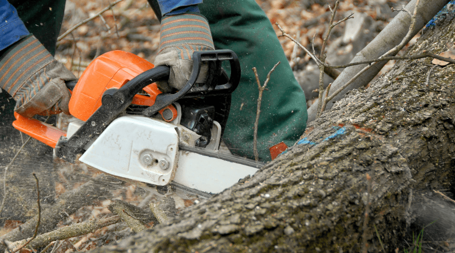 Featured Image -HOW DOES A CHAINSAW WORK_