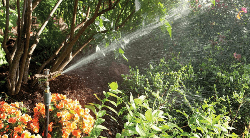 Featured Image - THE BEST SPRINKLER FOR LARGE AREAS