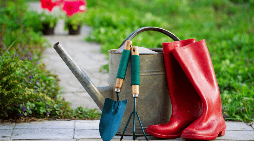 Featured Image - THE VERY BEST SHOES FOR GARDENING
