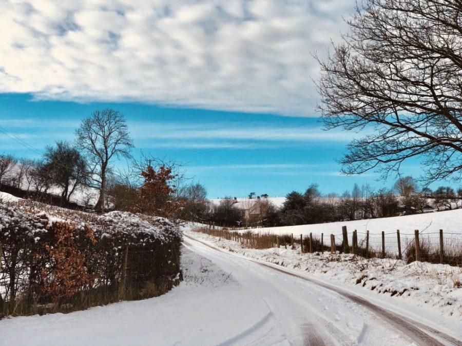 snowy road home private road in winter skid steer snowblower