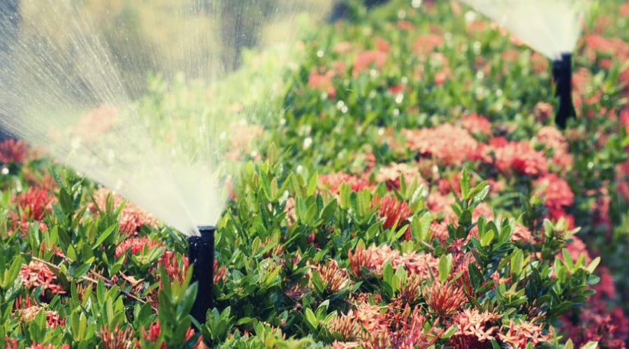 5 Of The Best Sprinkler Heads On The Market