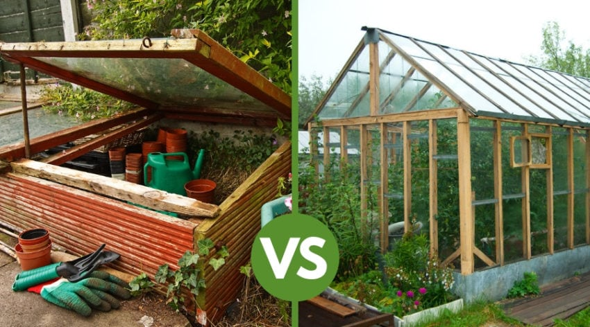 Featured Image - Cold Frame VS Greenhouse:What is the Difference