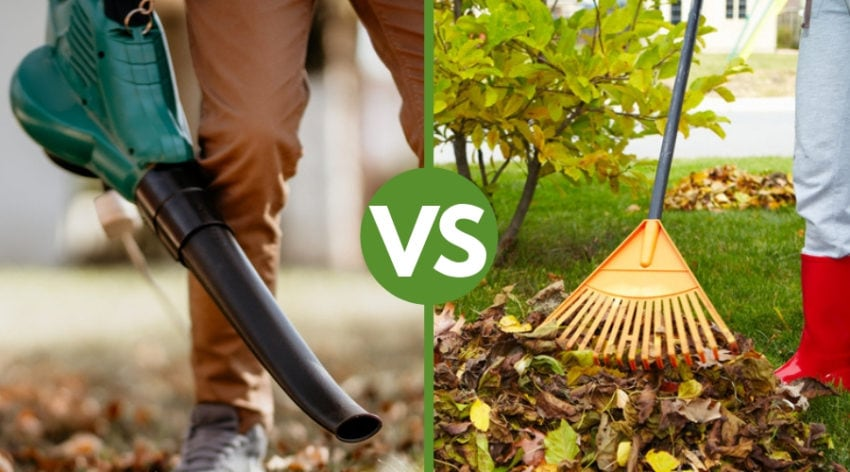 Featured Image - Leaf Blower VS Rake:The Pros & Cons to Both