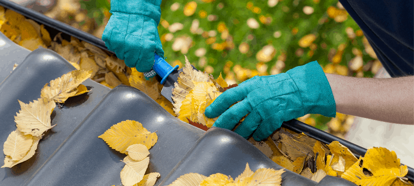 Featured Image- Step-by-Step Guide to Clean Your Gutter Guards