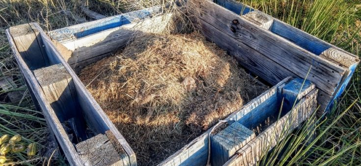 A Guide to Making Your Own Compost